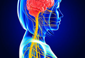 DARPA Wants to Jolt the Nervous System with Electricity, Lasers, Sound Waves, and Magnets