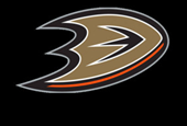 NHL Teams and Business – The Anaheim Ducks