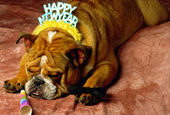 6 New Year's Resolutions for Entrepreneur Wannabes
