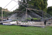 How container-grown plants capture sprinkler irrigation water