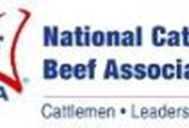 Cattlemen sue EPA