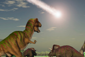 This week I learned the meteor that doomed the dinos gave us seasonal trees, and more