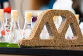 Self-Healing Bricks That are Grown From Bacteria