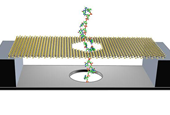 A Superfast DNA Sequencer Based on Motion Detection