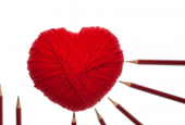 When Job Searching Should You Follow Your Heart or Head?