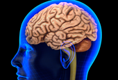 New Results for Experimental Alzheimer's Drug