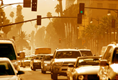 Can Air Pollution Take a Toll on Your Memory?