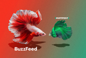'Shrinkage Seems Inevitable' in BuzzFeed and HuffPost Deal