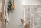 An Alternative to Titanium Dioxide in White Paint