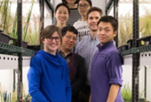 Researchers detail genetic mechanisms that govern growth and drought response in plants