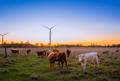 Food and Ag Climate Alliance unveils recommendations