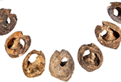 Ancient beads are the earliest sign of communication with fashion