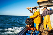 Fishing saps the ocean's power to capture carbon