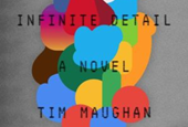 Infinite Detail review: The dystopia that awaits when the Internet goes out