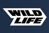 Mobile company Wildlife opens development studio SuperWow Games