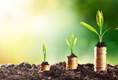 Sustainability vs. profitability: Is it one or the other?