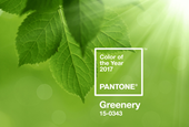 It's 'Greenery' for 2017! How Pantone Picks the Color of the Year