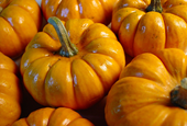 October: The Perfect Job Search Month